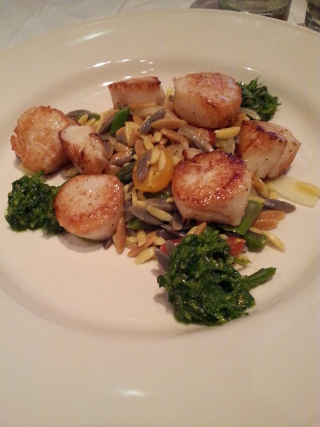 Seared Wellfleet Day Boat Scallops - Clyde's Georgetown