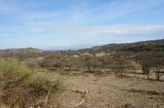 Mkuru Training Camp