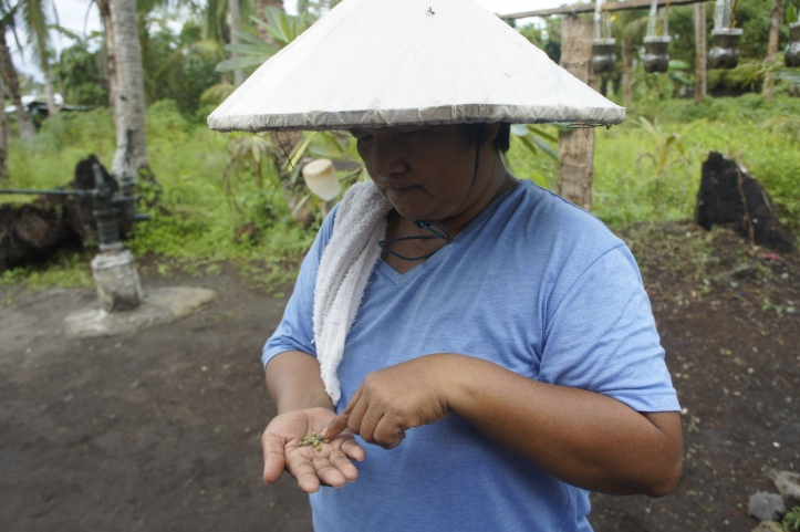 Woman farmer who works in a collective in Dulag, Leyte, Philippines